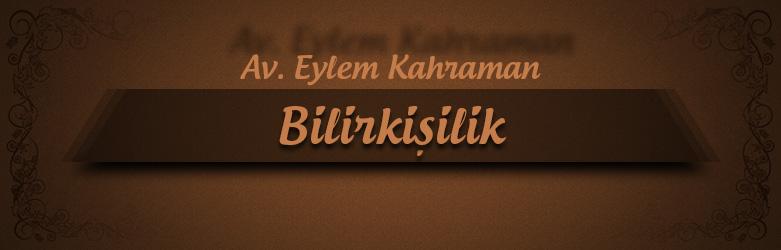 03-bilirkisilik